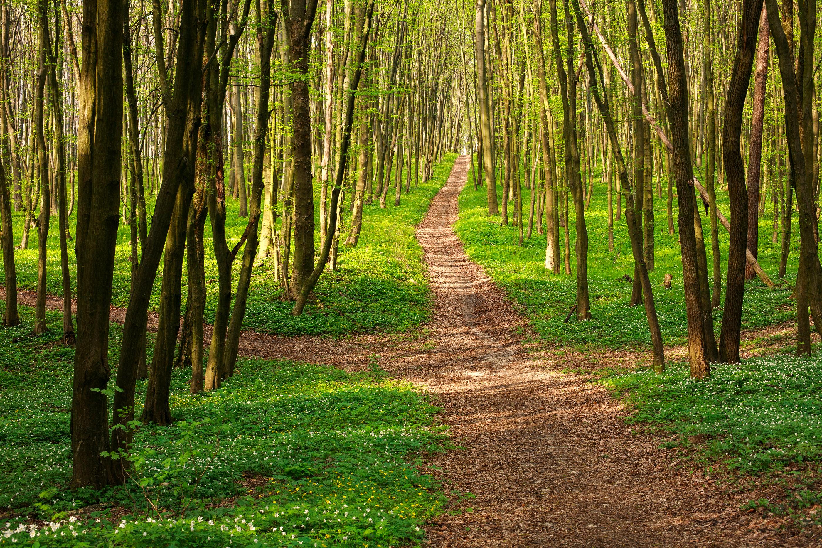 6 freins à notre cheminement spirituel